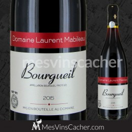 Bourgueil Domaine Mabileau 2015