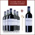 Petit Castel 2016 Domaine du Castel ( 5 Achetés +1 Offert )