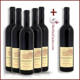 Shimshon Cabernet Sauvignon 2017 ( 5 Achetés + 1 Offert )