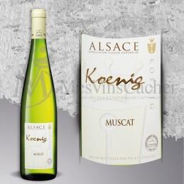 Muscat d'Alace  Koenig 2017