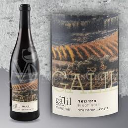 Galil Pinot Noir 2010